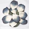 Paper Petals Confetti
