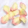Embossed Paper Petals Confetti