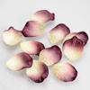 Mini Paper Petal Confetti