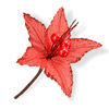 Hessian Red Poinsettia with Red Berries