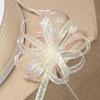 Iridescent Lurex Pull Bow Ribbon