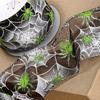 Halloween Spider Web Ribbon