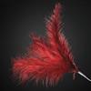 3 Feathers Spray