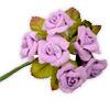 Velvet Rose with Leaf